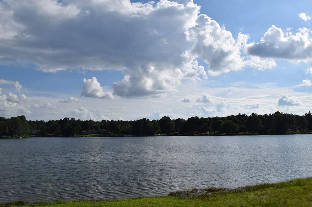 lake longleaf019jpg